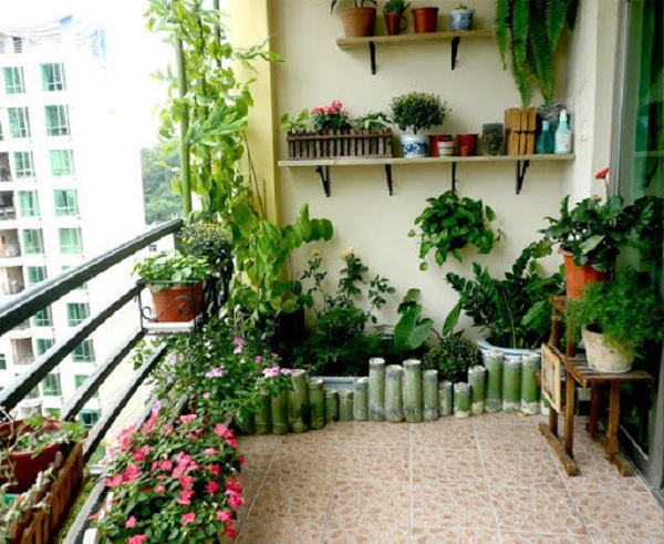 Trồng cây xanh ở ban công (lô gia) căn hộ chung cư